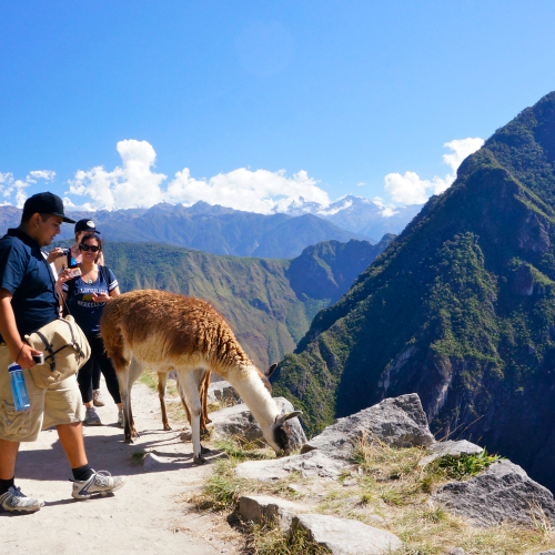 Sidebar Photo, UC Davis Study Abroad, Summer Abroad Peru Program
