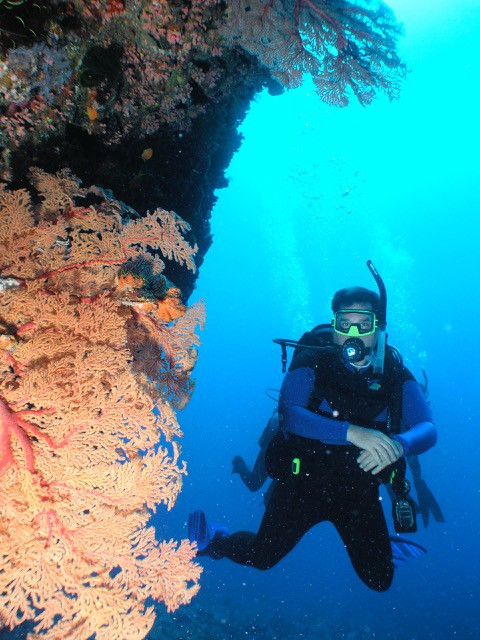 Blog Photo, Scuba Diving