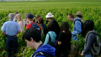 UC Davis Study Abroad, Summer Abroad France_Wine Program, Photo Album, Image 13
