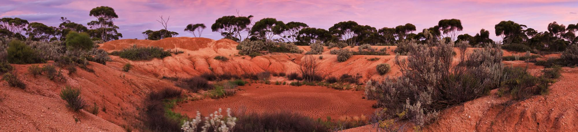 UC Davis Study Abroad, Summer Abroad Australia, Urban to Outback Program, Header Image, Courses Page