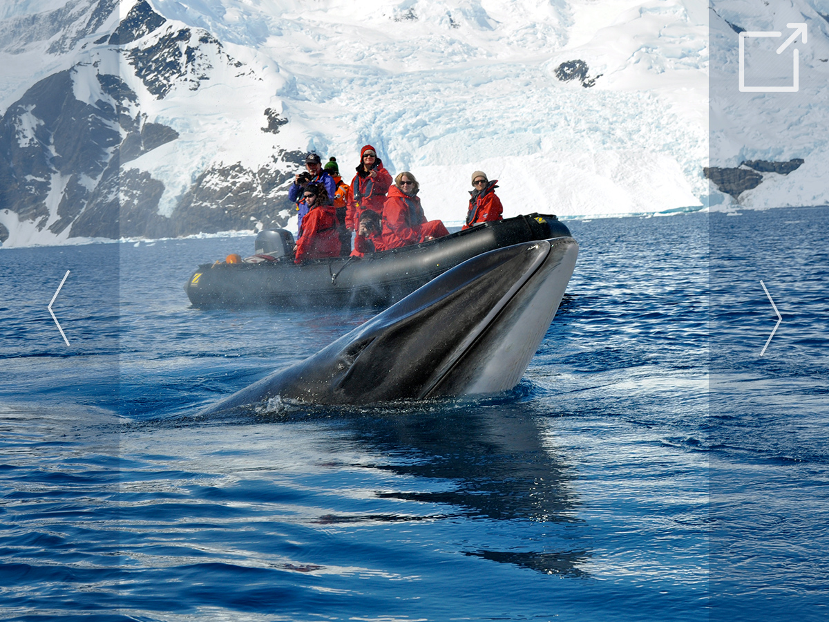 Seminars Abroad Antarctica - Gallery Photo